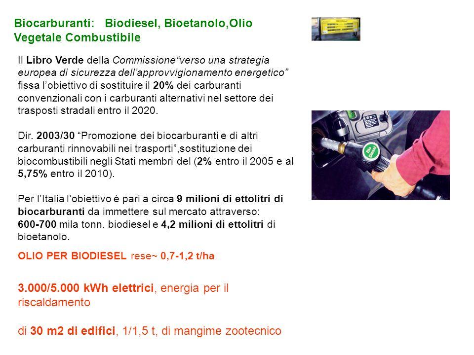 Biocarburanti: Biodiesel, Bioetanolo,Olio Vegetale Combustibile