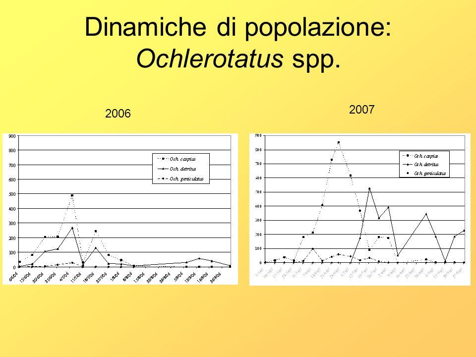 Dinamiche di popolazione: Ochlerotatus spp.