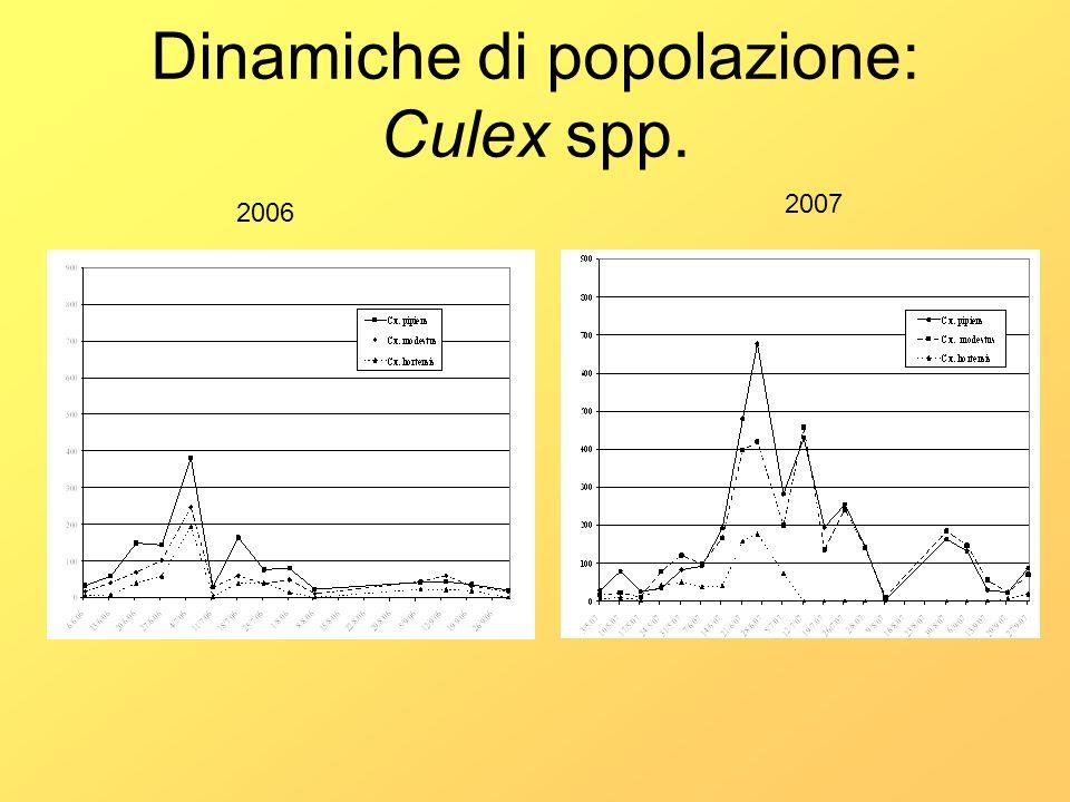 Dinamiche di popolazione: Culex spp.