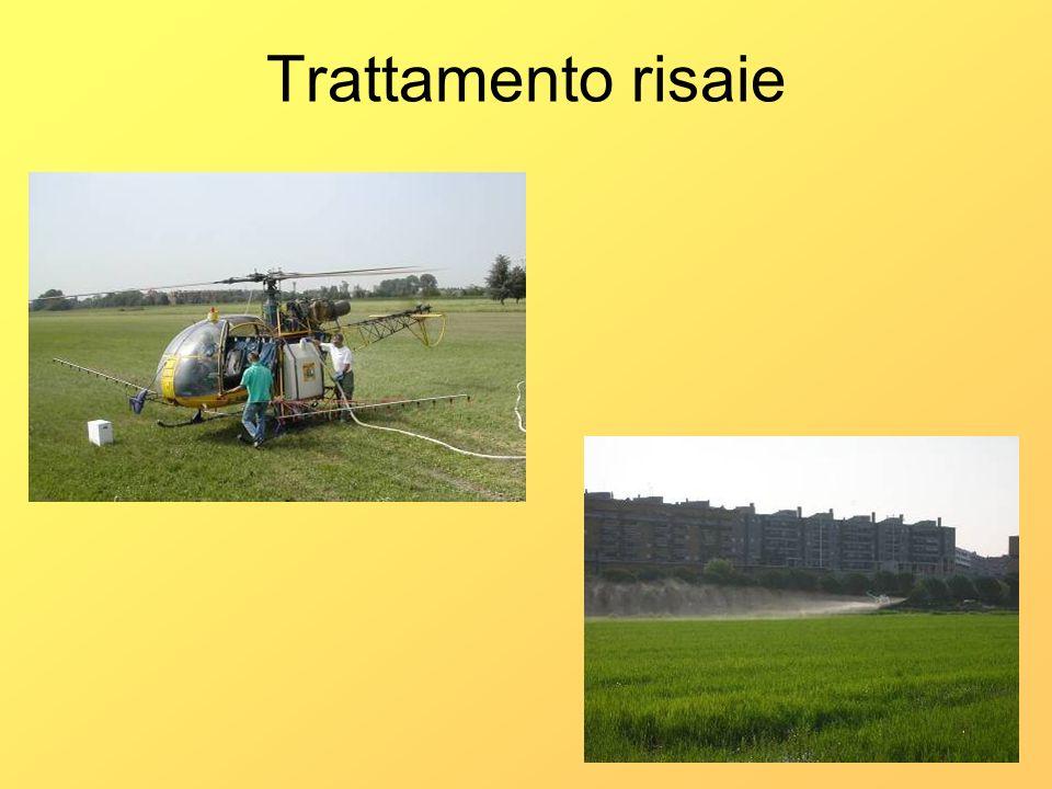 Trattamento risaie