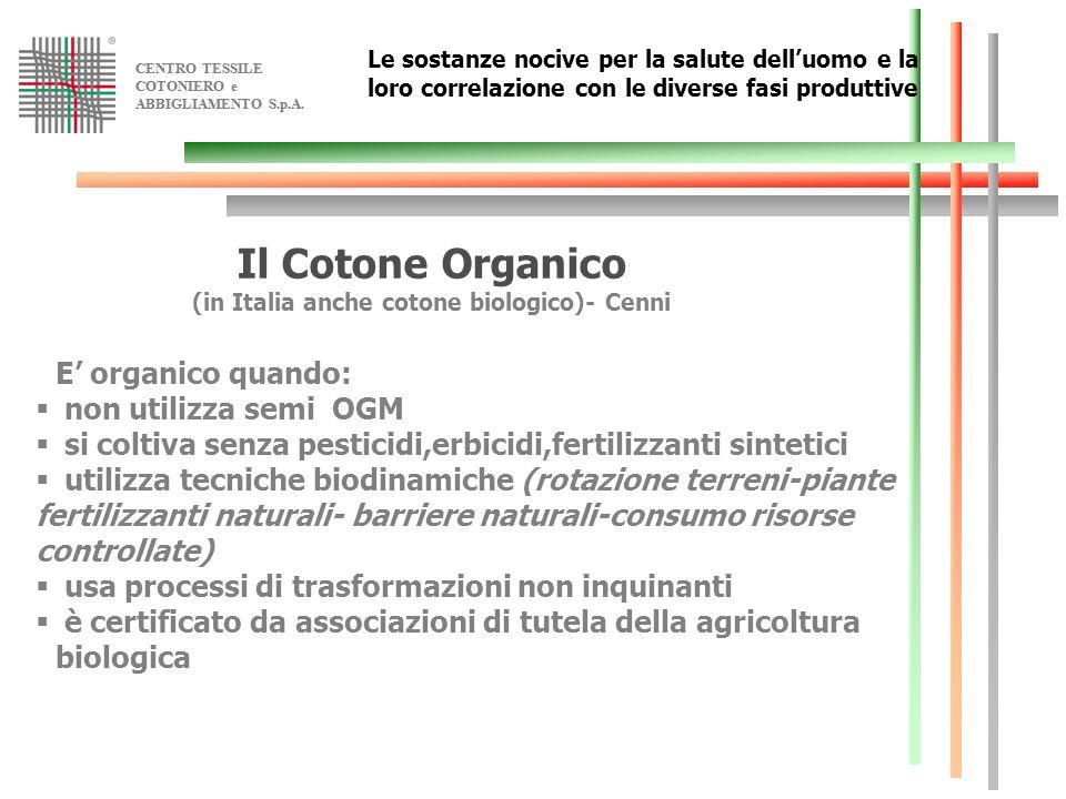 (in Italia anche cotone biologico)- Cenni