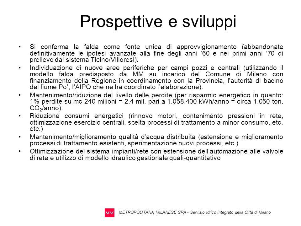 Prospettive e sviluppi