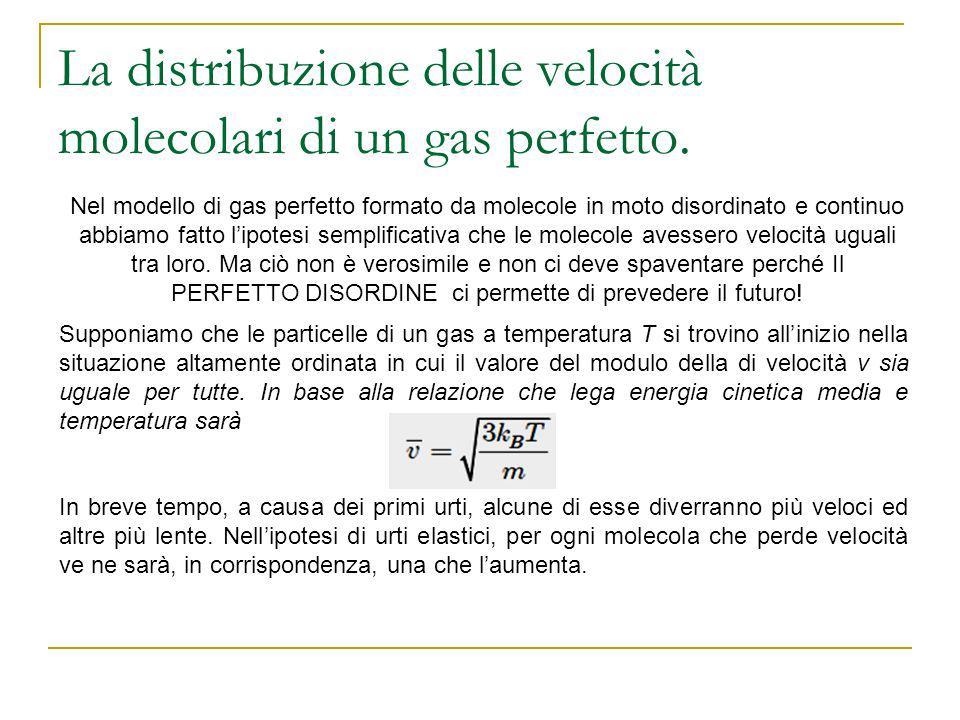 La distribuzione delle velocità molecolari di un gas perfetto.