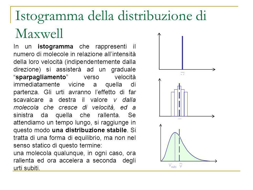 Istogramma della distribuzione di Maxwell
