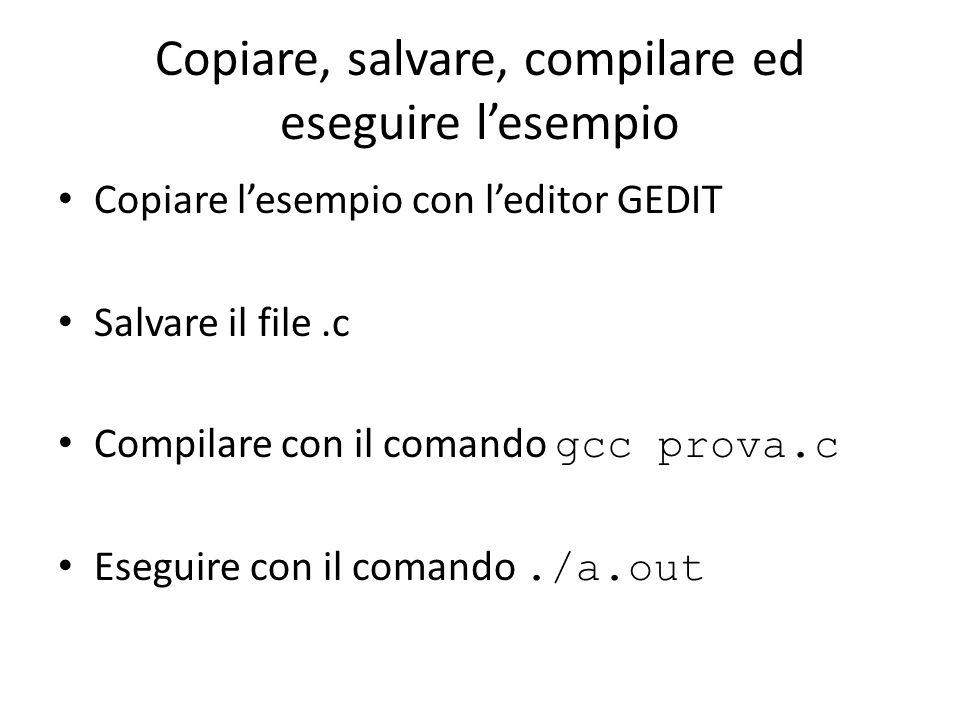 Copiare, salvare, compilare ed eseguire l'esempio