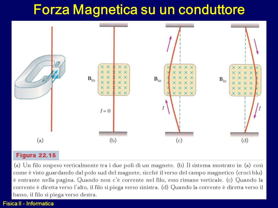 3a97609220a Forza Magnetica su un conduttore - ppt video online scaricare