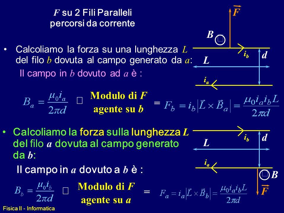 F su 2 Fili Paralleli percorsi da corrente