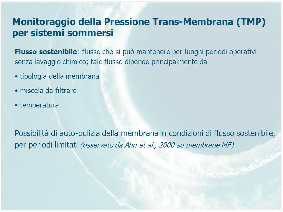 Monitoraggio della Pressione Trans-Membrana (TMP) per sistemi sommersi