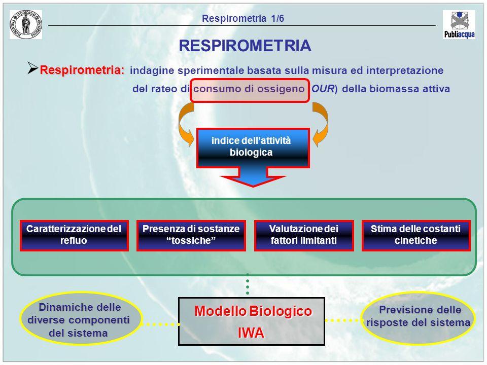 RESPIROMETRIA Modello Biologico