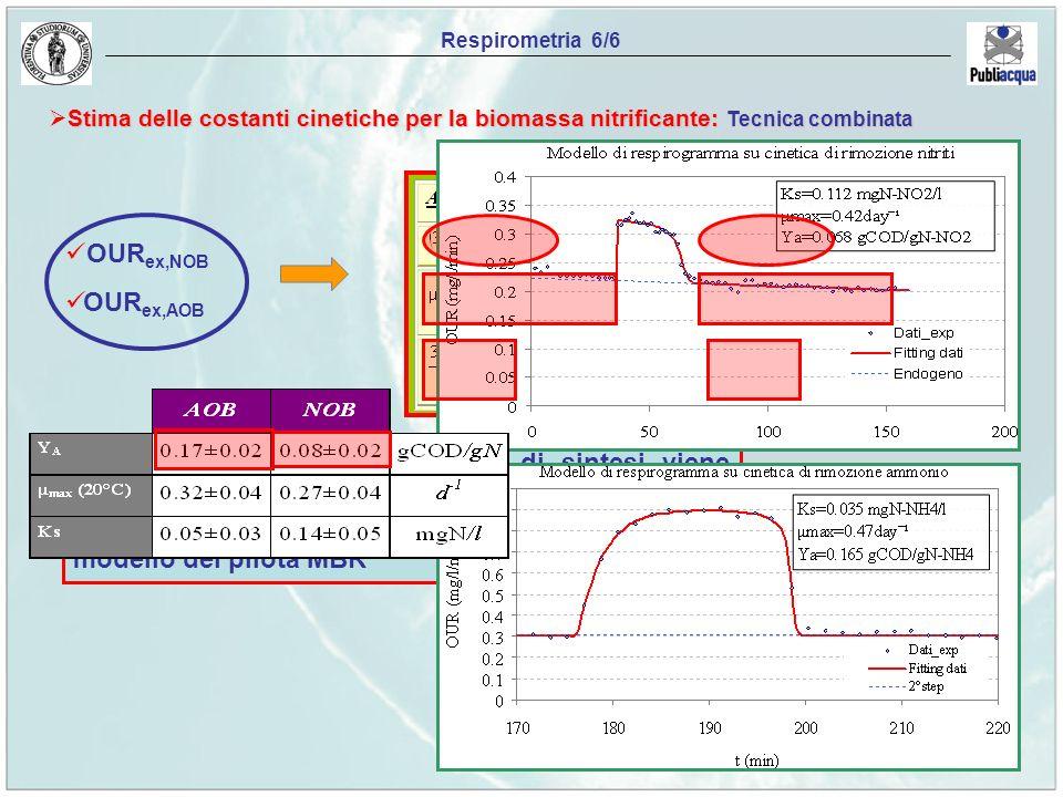 Respirometria 6/6 Stima delle costanti cinetiche per la biomassa nitrificante: Tecnica combinata. OURex,NOB.