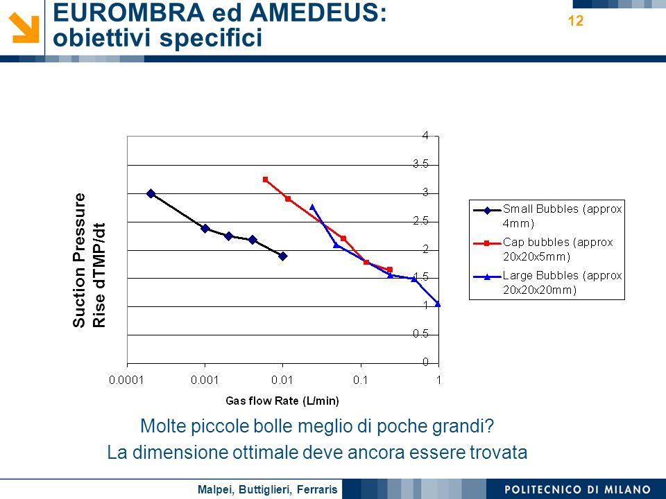 EUROMBRA ed AMEDEUS: obiettivi specifici