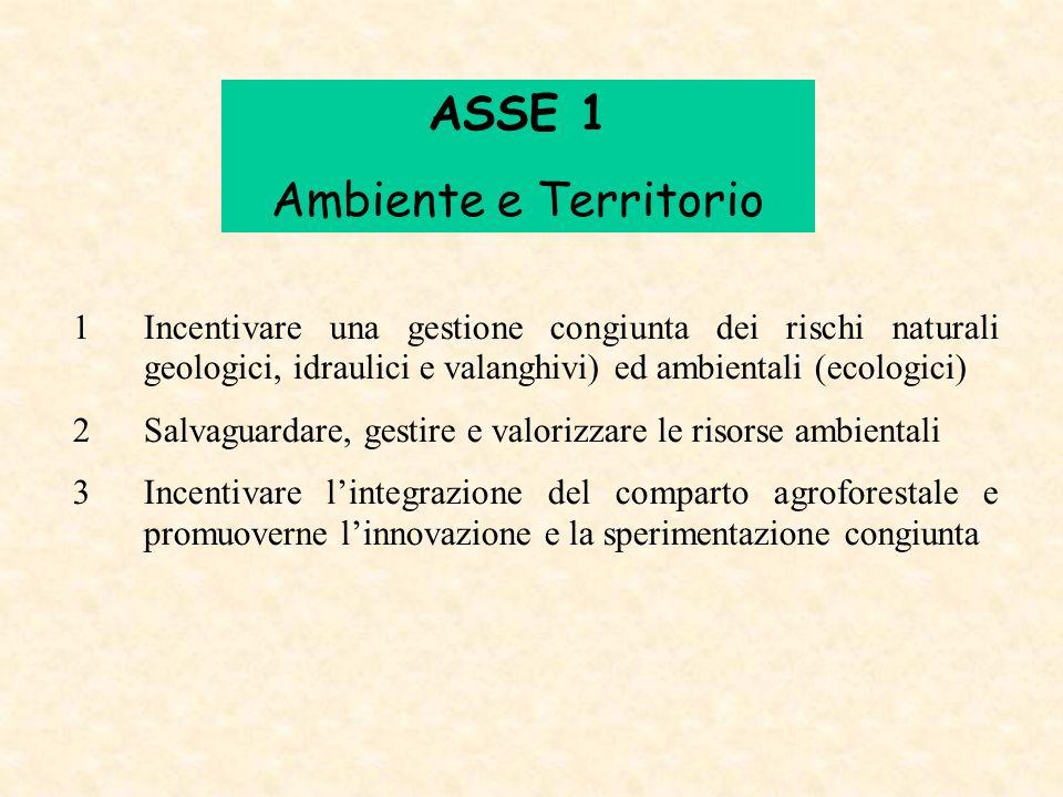 ASSE 1 Ambiente e Territorio
