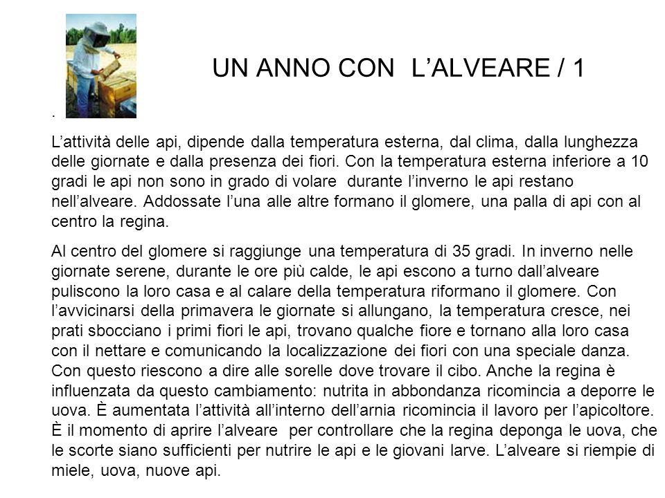UN ANNO CON L'ALVEARE / 1 .