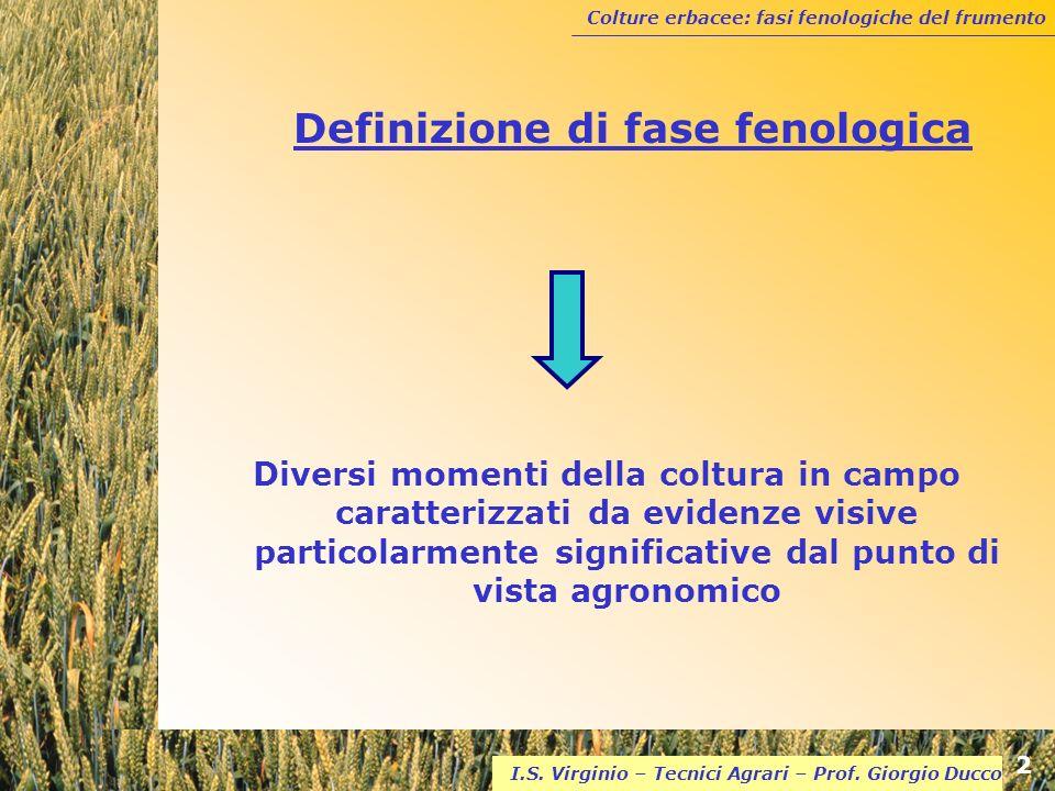 Definizione di fase fenologica