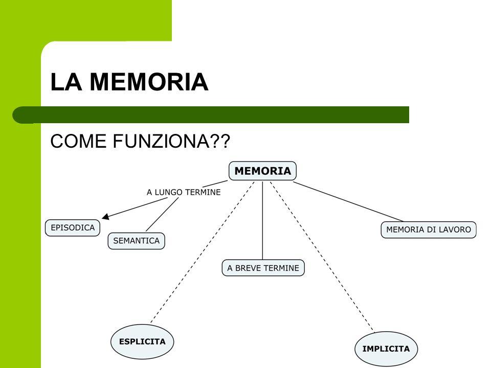 LA MEMORIA COME FUNZIONA