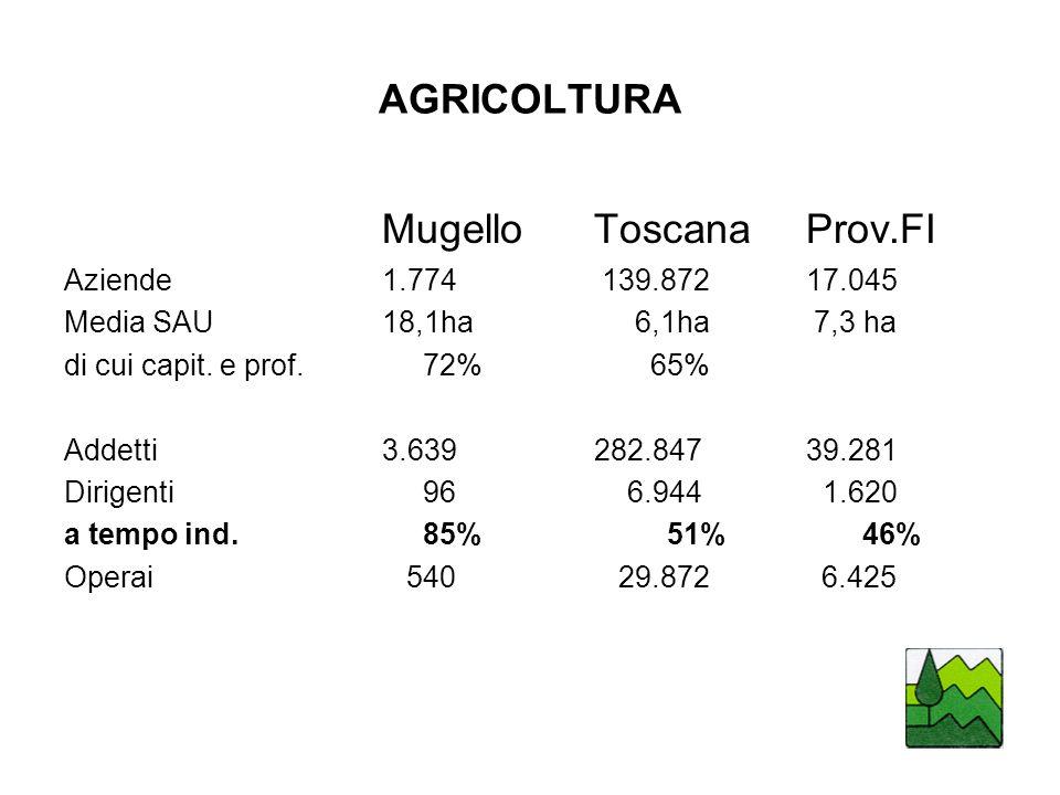Mugello Toscana Prov.FI