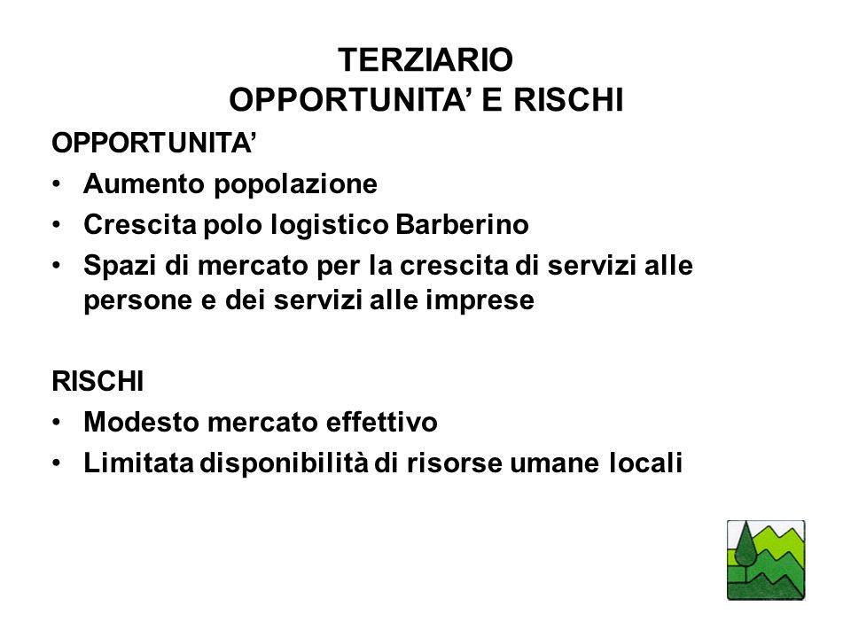 TERZIARIO OPPORTUNITA' E RISCHI