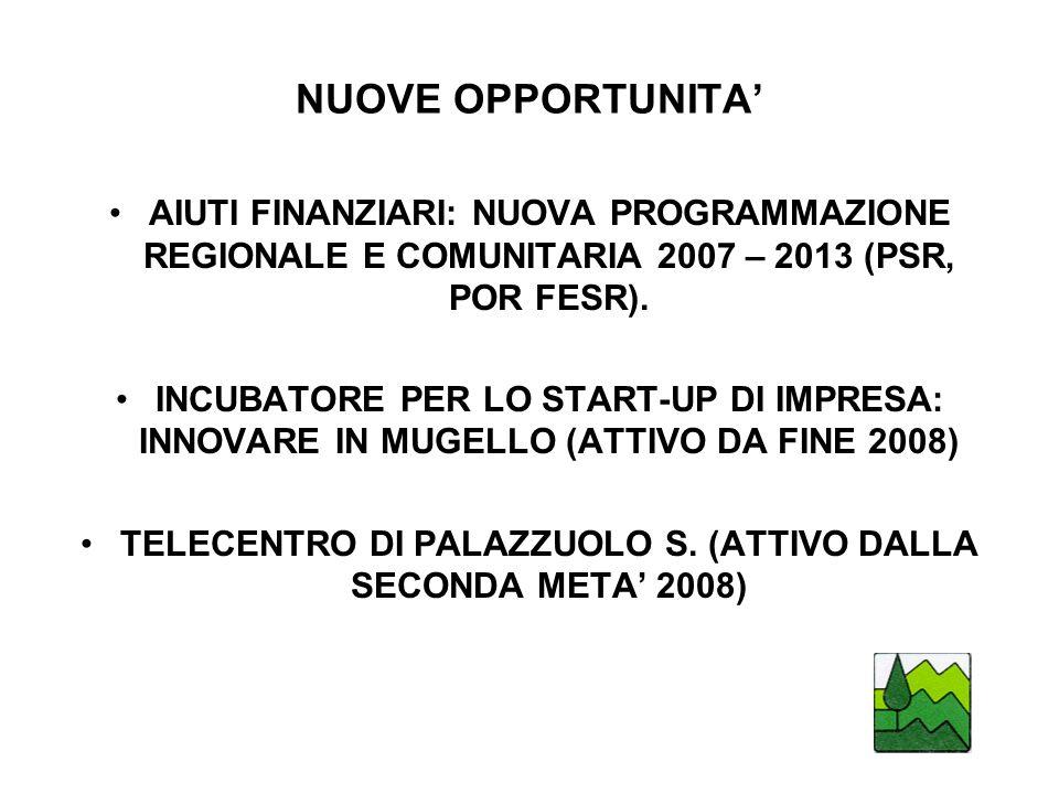 TELECENTRO DI PALAZZUOLO S. (ATTIVO DALLA SECONDA META' 2008)