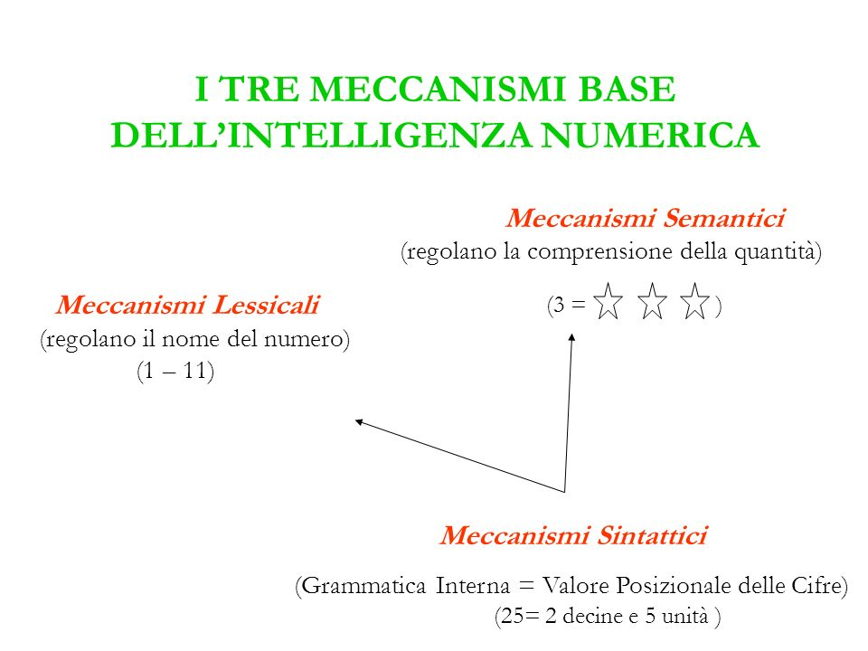 I TRE MECCANISMI BASE DELL'INTELLIGENZA NUMERICA