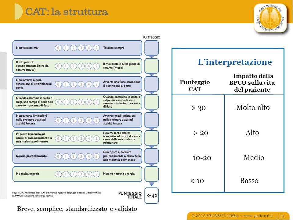 CAT: la struttura L'interpretazione > 20 Alto