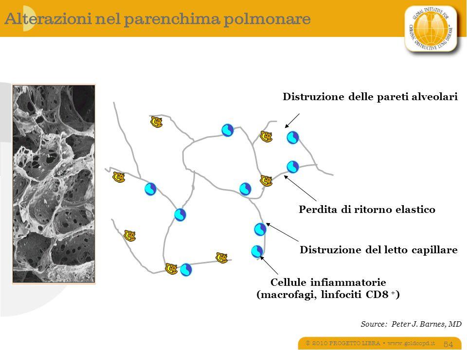 Alterazioni nel parenchima polmonare