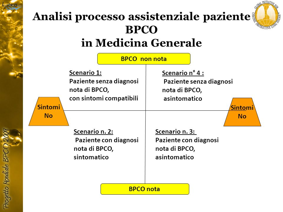 Analisi processo assistenziale paziente BPCO
