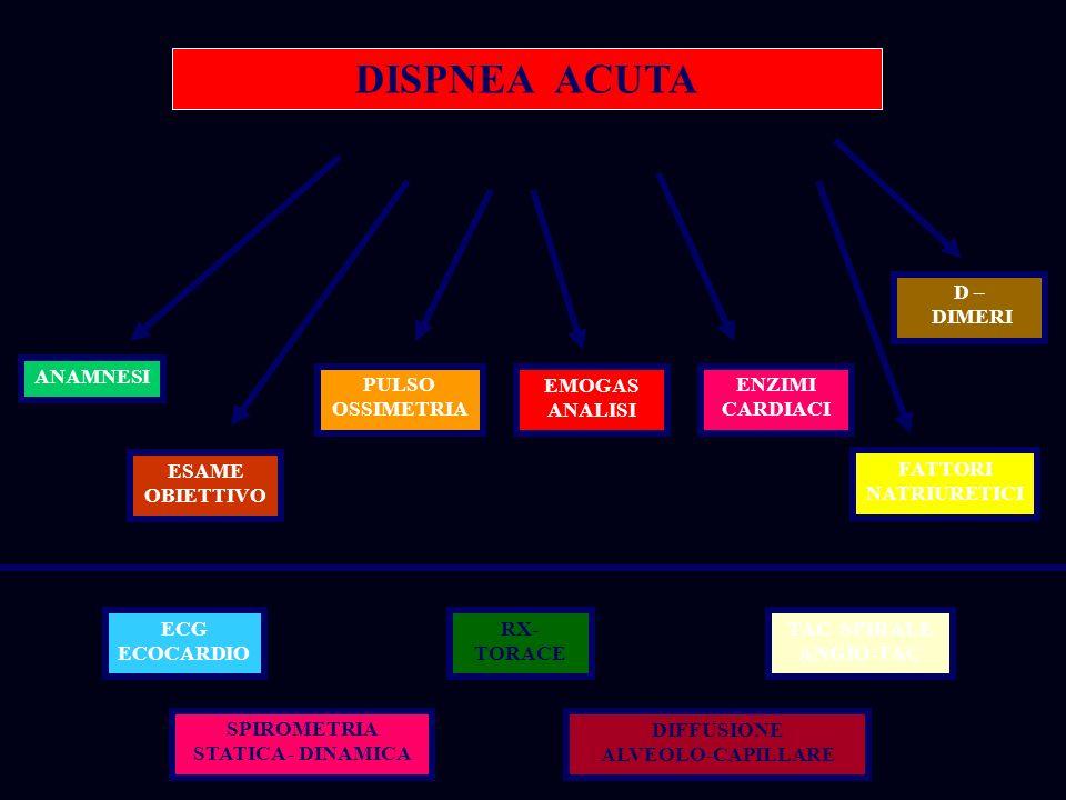 SPIROMETRIA STATICA - DINAMICA DIFFUSIONE ALVEOLO-CAPILLARE