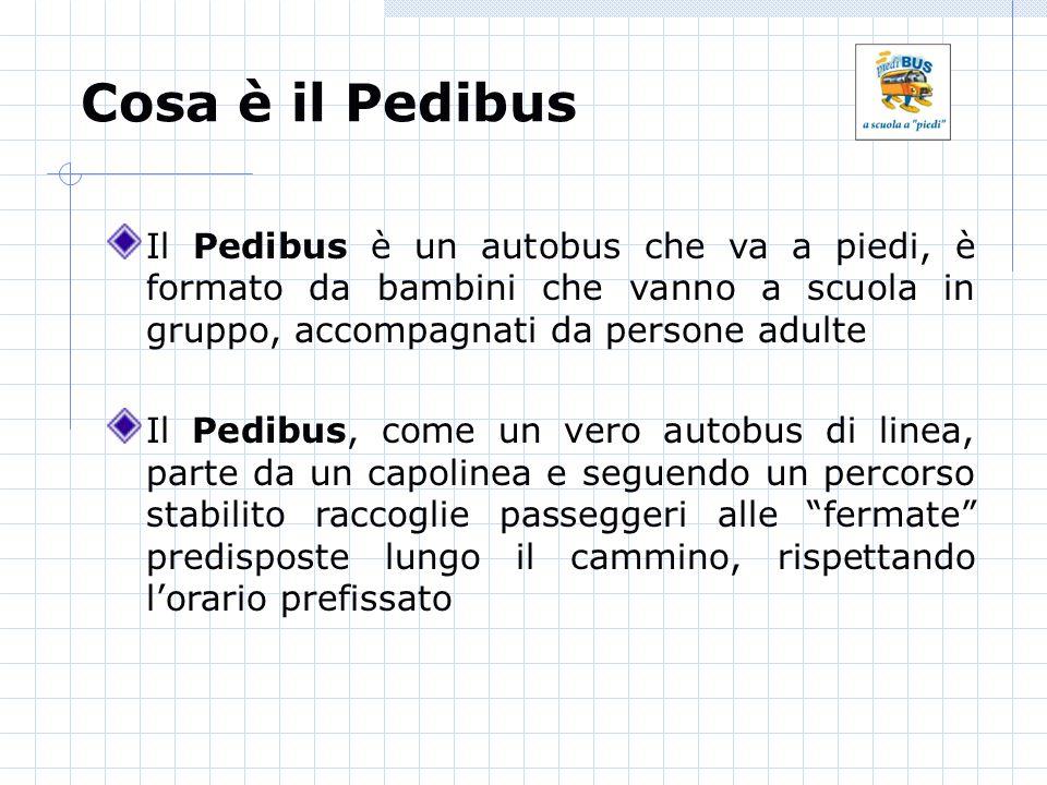 Cosa è il Pedibus Il Pedibus è un autobus che va a piedi, è formato da bambini che vanno a scuola in gruppo, accompagnati da persone adulte.