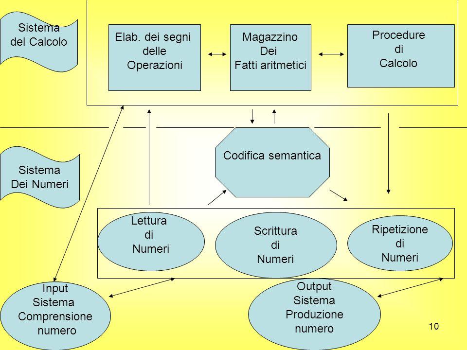 Sistema del Calcolo. Elab. dei segni. delle. Operazioni. Magazzino. Dei. Fatti aritmetici. Procedure.