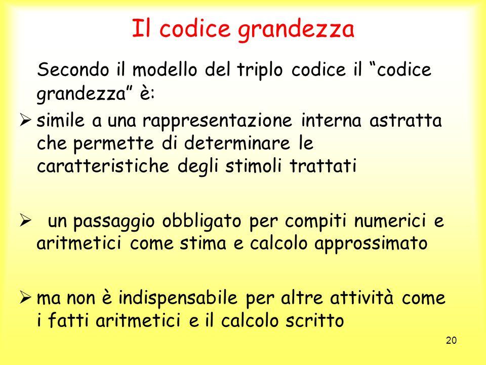 Il codice grandezza Secondo il modello del triplo codice il codice grandezza è: