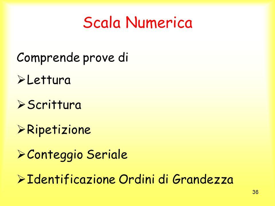 Scala Numerica Comprende prove di Lettura Scrittura Ripetizione