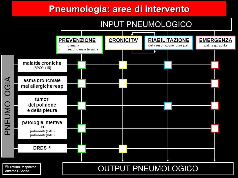 Pneumologia: aree di intervento