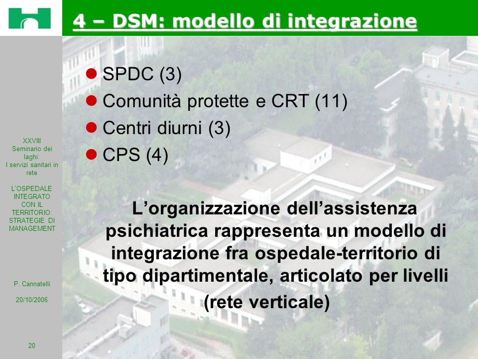 4 – DSM: modello di integrazione