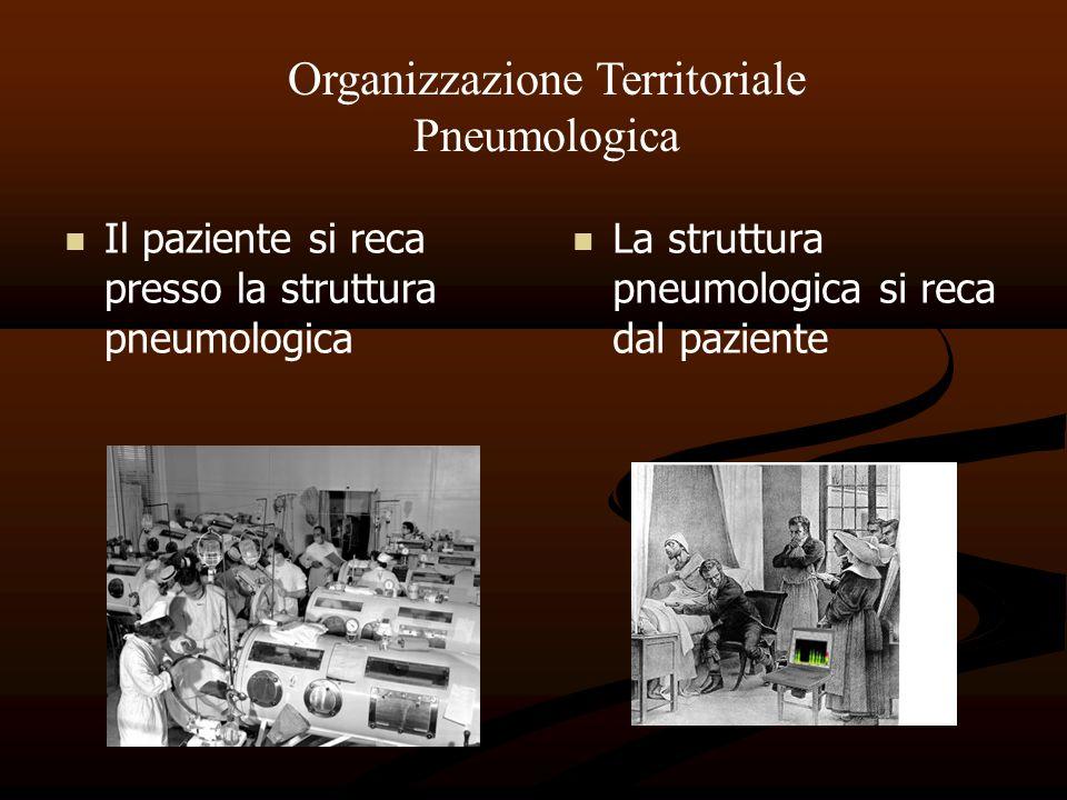 Organizzazione Territoriale