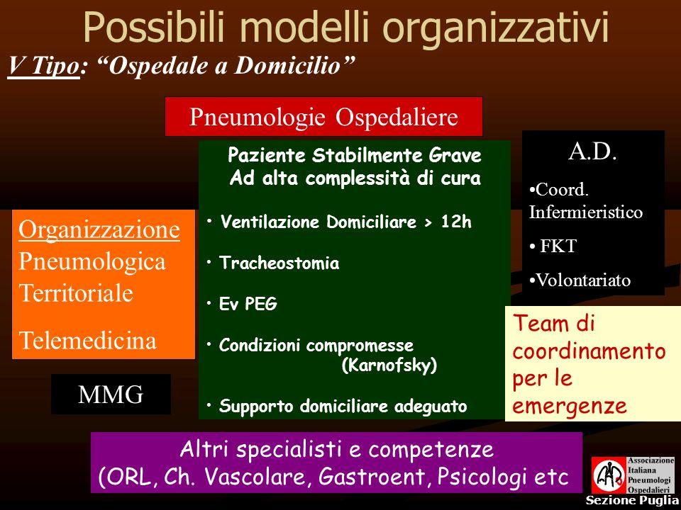 Possibili modelli organizzativi