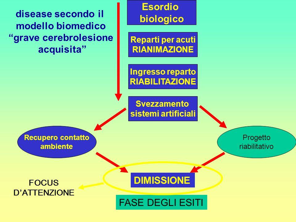 grave cerebrolesione