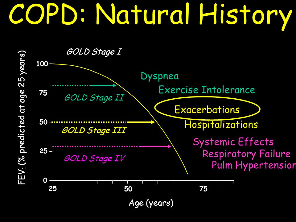 COPD: Natural History Dyspnea Exercise Intolerance Exacerbations