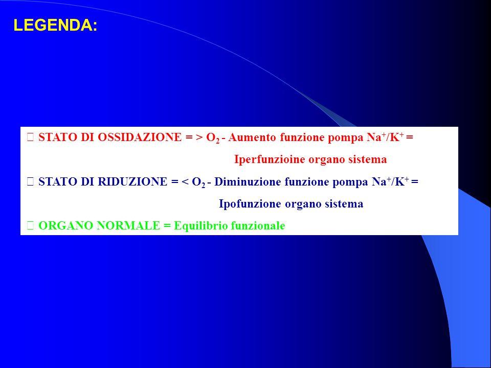 LEGENDA:  STATO DI OSSIDAZIONE = > O2 - Aumento funzione pompa Na+/K+ = Iperfunzioine organo sistema.
