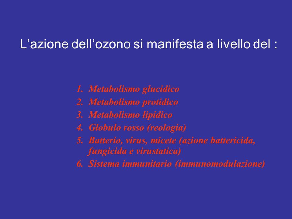 L'azione dell'ozono si manifesta a livello del :