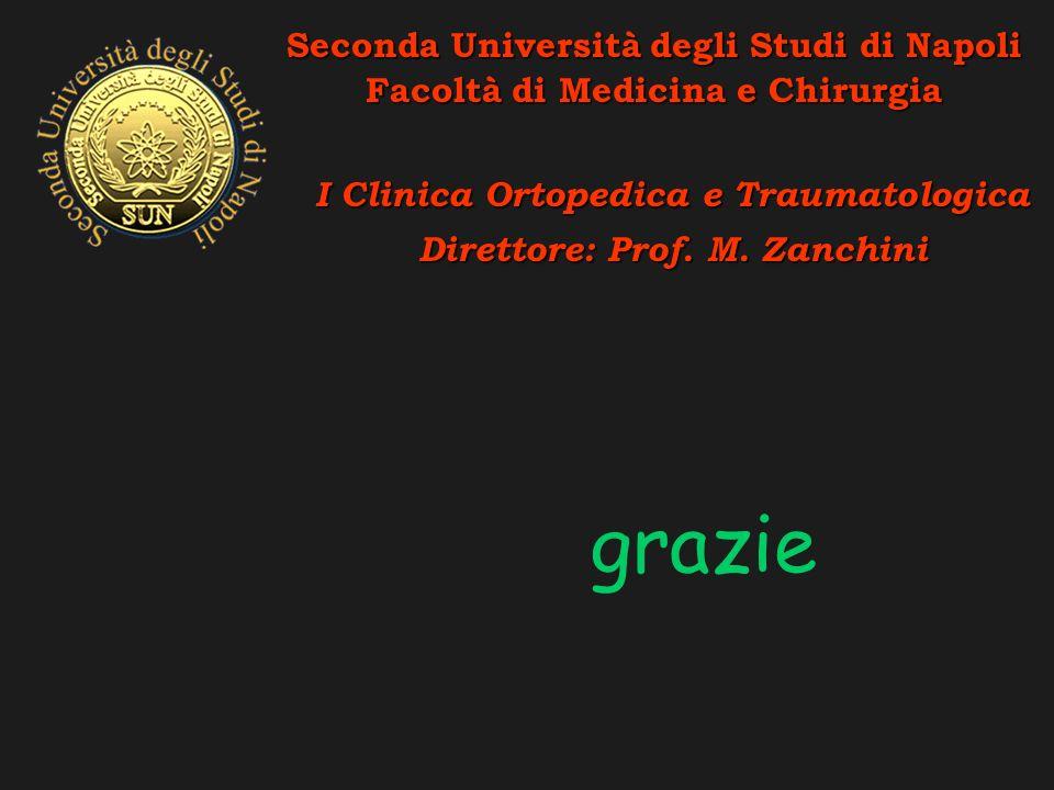grazie Seconda Università degli Studi di Napoli