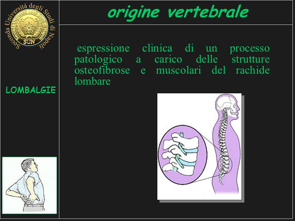 origine vertebrale espressione clinica di un processo patologico a carico delle strutture osteofibrose e muscolari del rachide lombare.