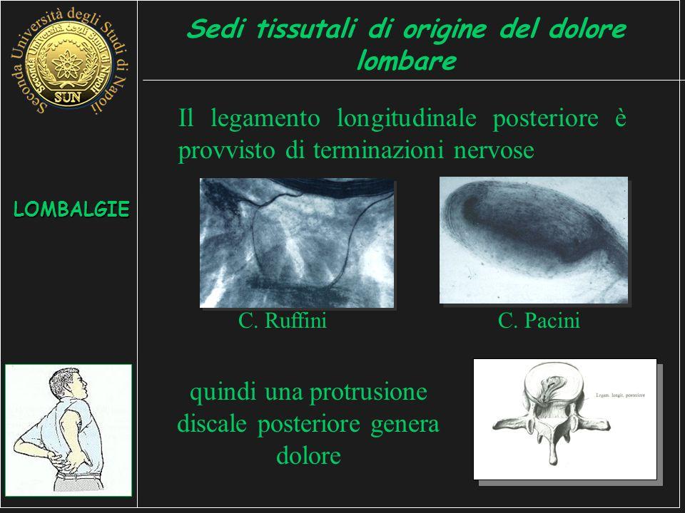 Sedi tissutali di origine del dolore lombare