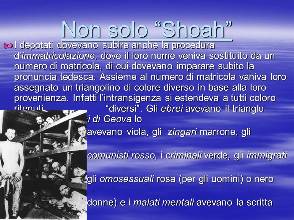 Non solo Shoah