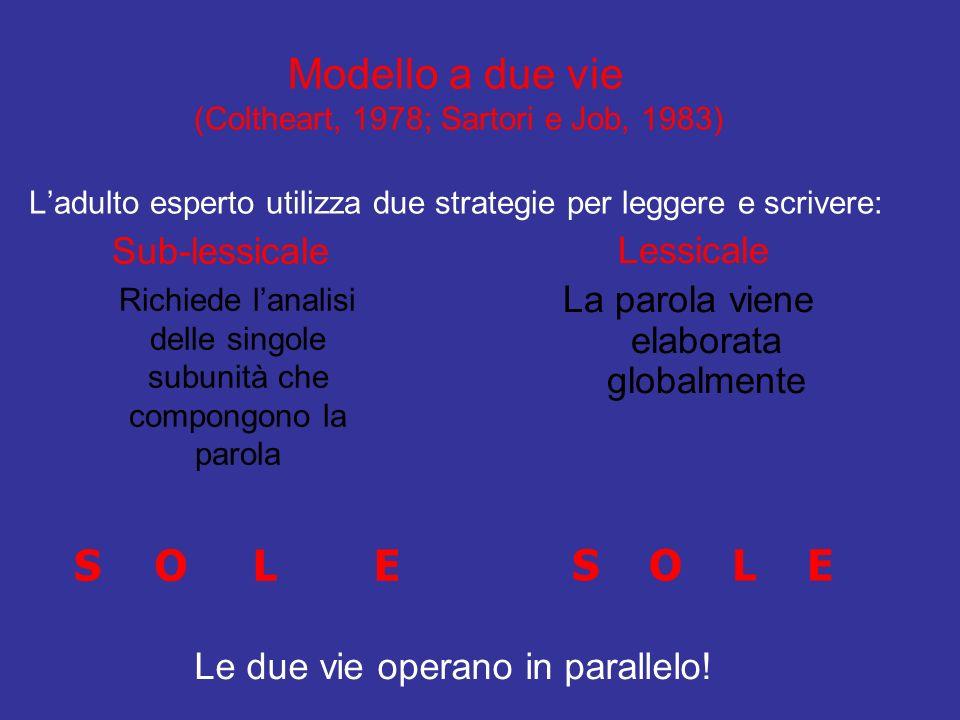 Modello a due vie (Coltheart, 1978; Sartori e Job, 1983) L'adulto esperto utilizza due strategie per leggere e scrivere: