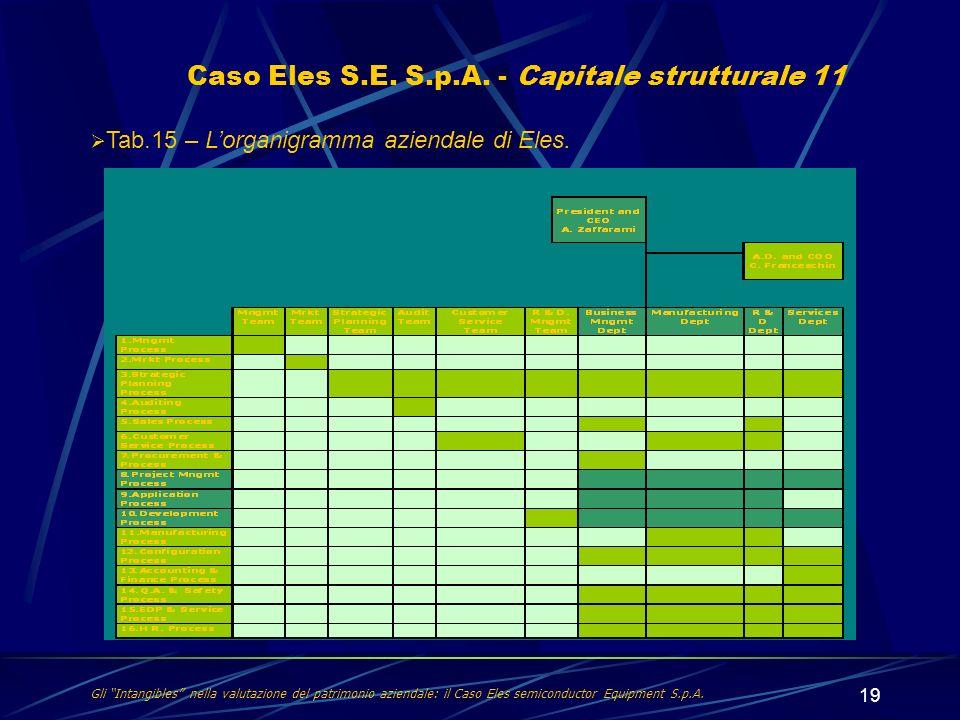 Caso Eles S.E. S.p.A. - Capitale strutturale 11