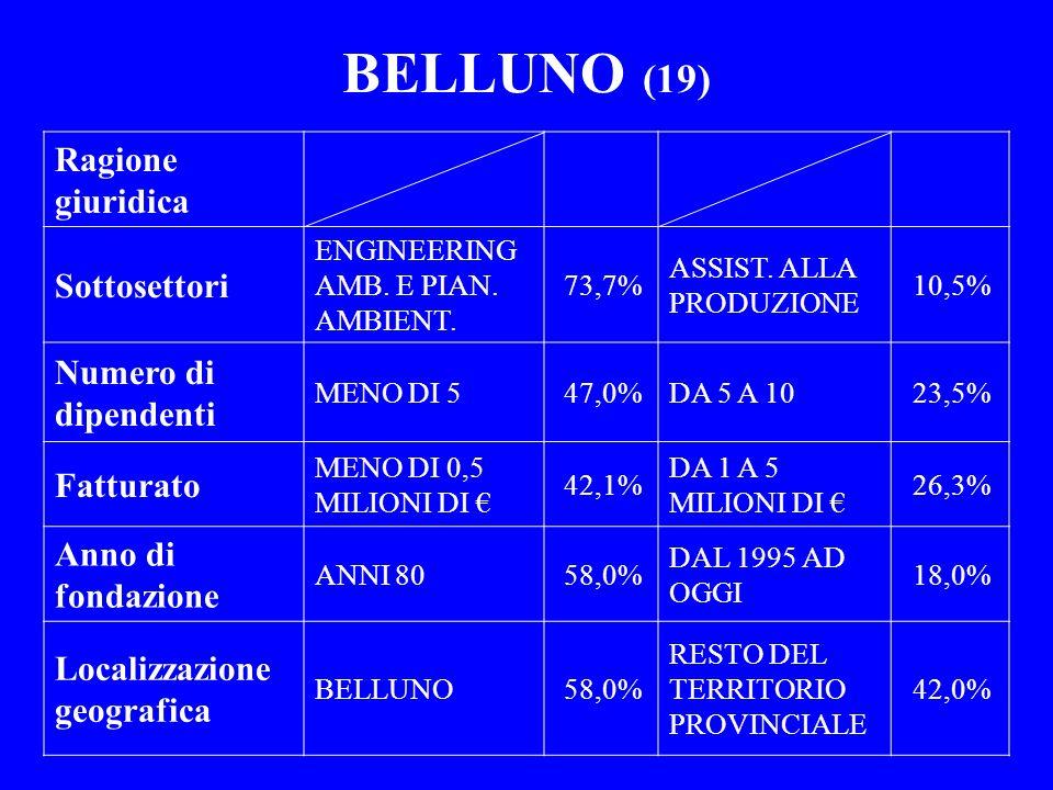 BELLUNO (19) Ragione giuridica Sottosettori Numero di dipendenti