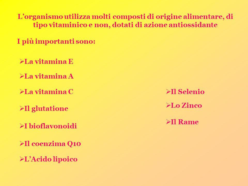 L'organismo utilizza molti composti di origine alimentare, di tipo vitaminico e non, dotati di azione antiossidante