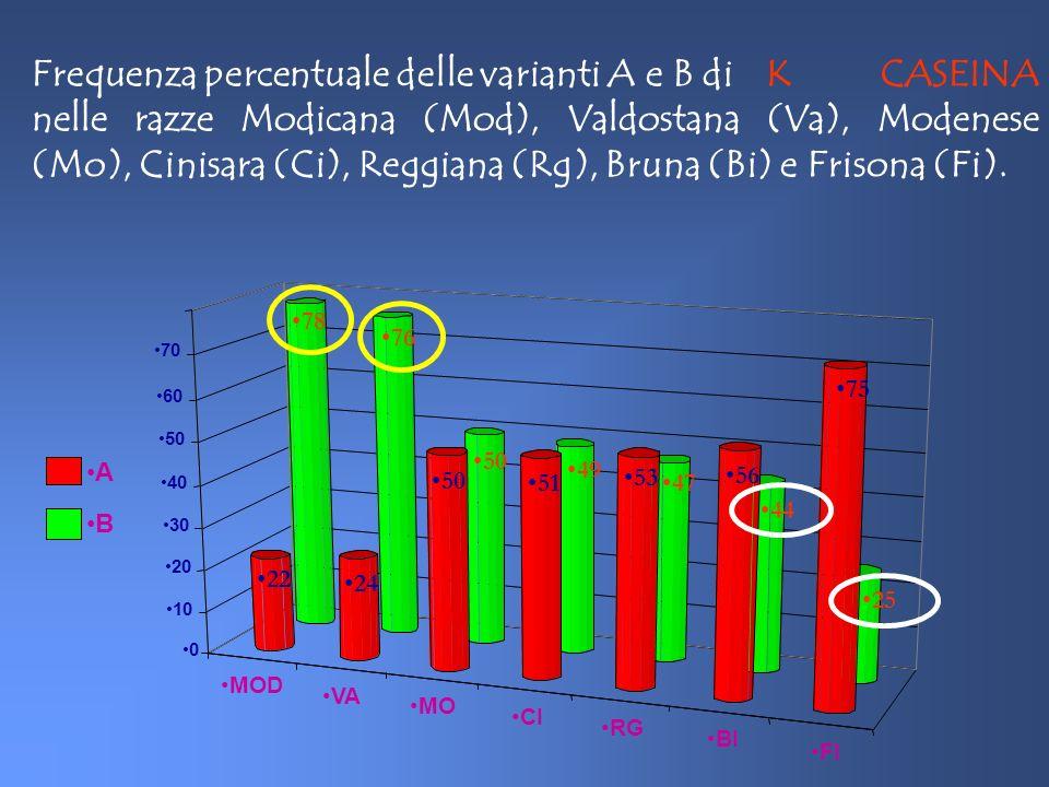 Frequenza percentuale delle varianti A e B di