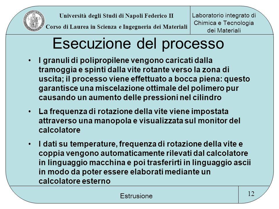Esecuzione del processo