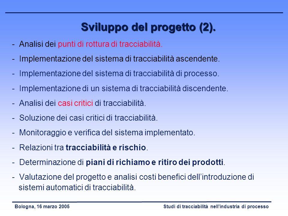 Sviluppo del progetto (2).
